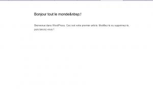 WordPress 3.2 éditeur plein écran sans distraction