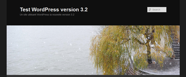 WordPress version 3.2