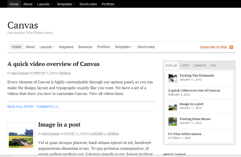 Thème WordPress Canvas de Woothemes