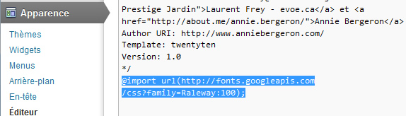 Google fonts Web - IMPORT css